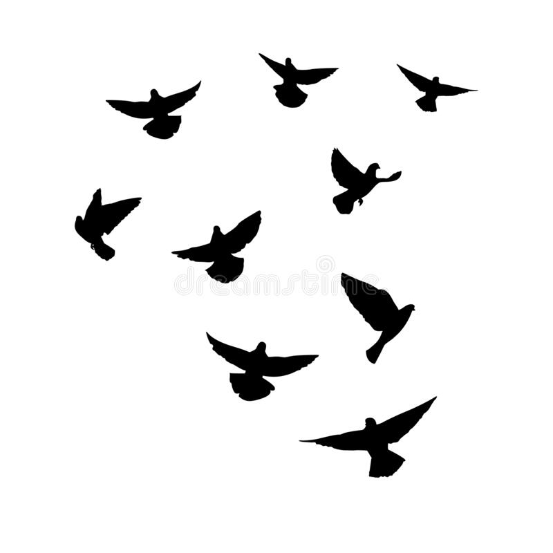 Free Doves Are Flying. Silhouette Of Pigeons That Fly On A White Background. Vector Illustration Stock Photo - 174116750