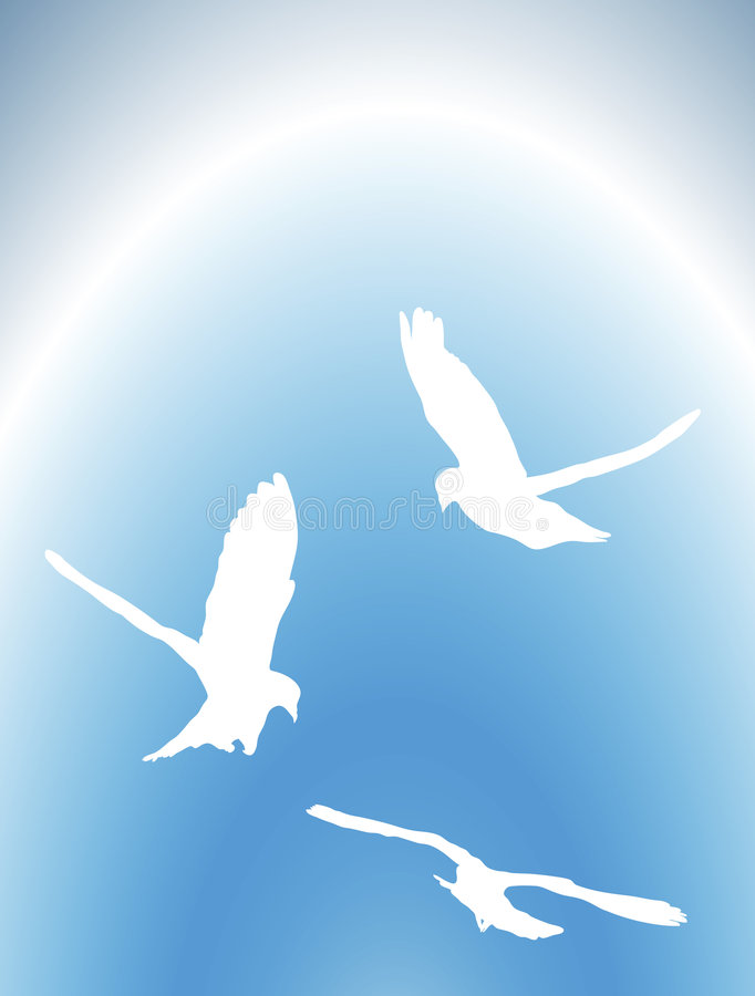 Free Doves Fly 1 Royalty Free Stock Images - 4773099