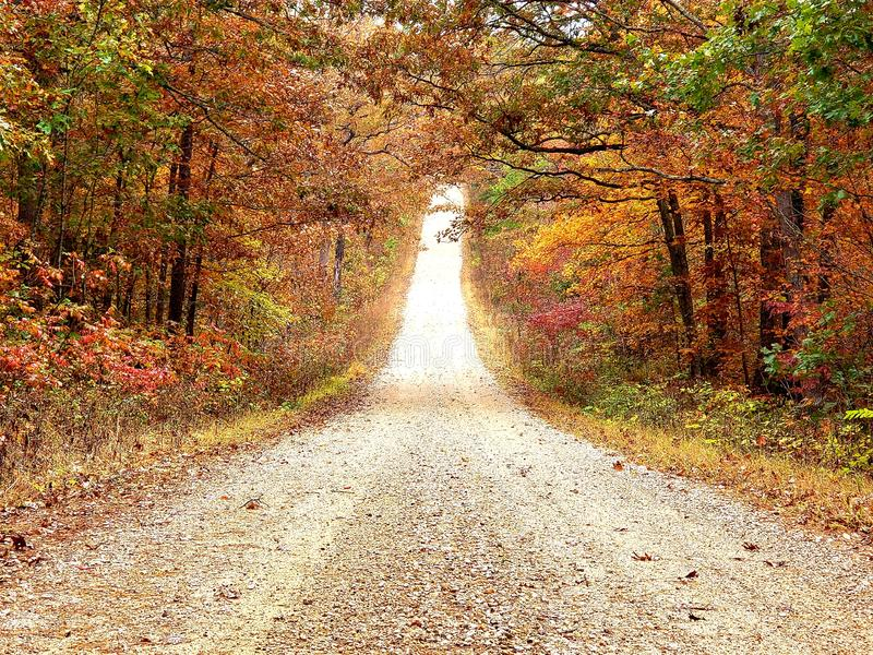 Down a country road in the fall royalty free stock images