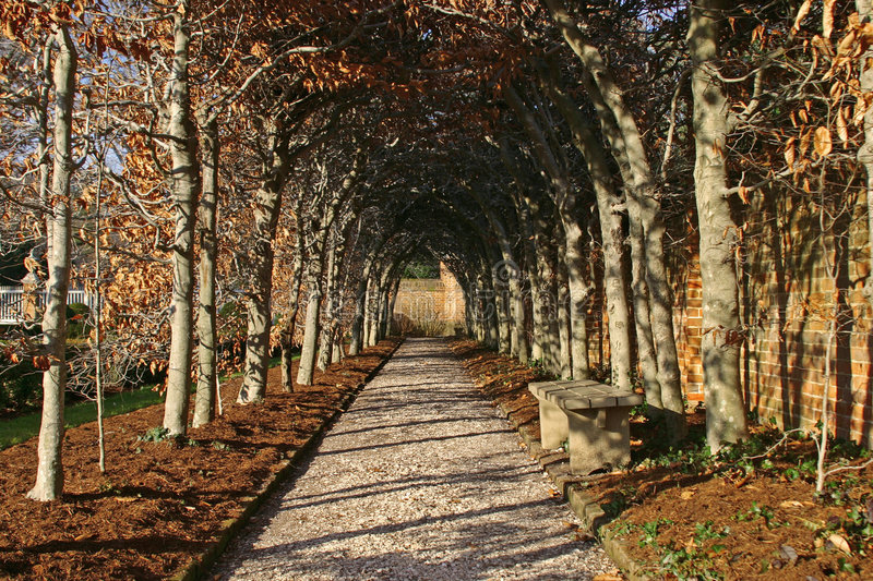 Download Down The Path Stock Images - Image: 330634