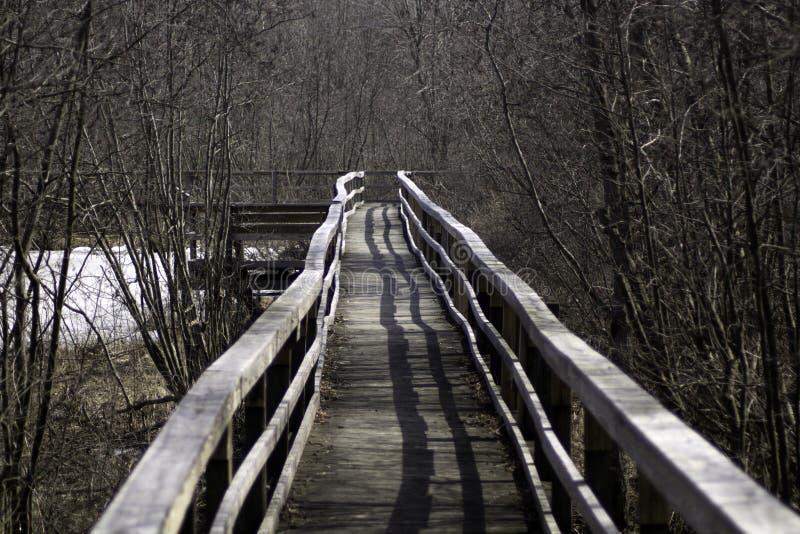 Download Down the Winter Boardwalk stock photo. Image of boardwalk - 90060654