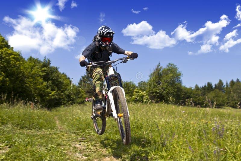 Download Downhill biker stock photo. Image of extreme, biker, free - 23368444
