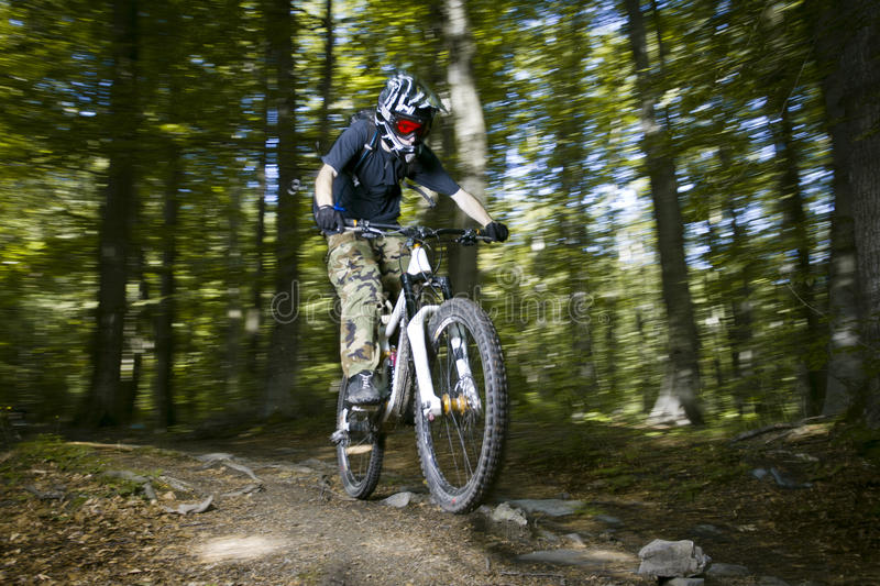 Download Downhill mountain bikers stock photo. Image of sport - 19655566