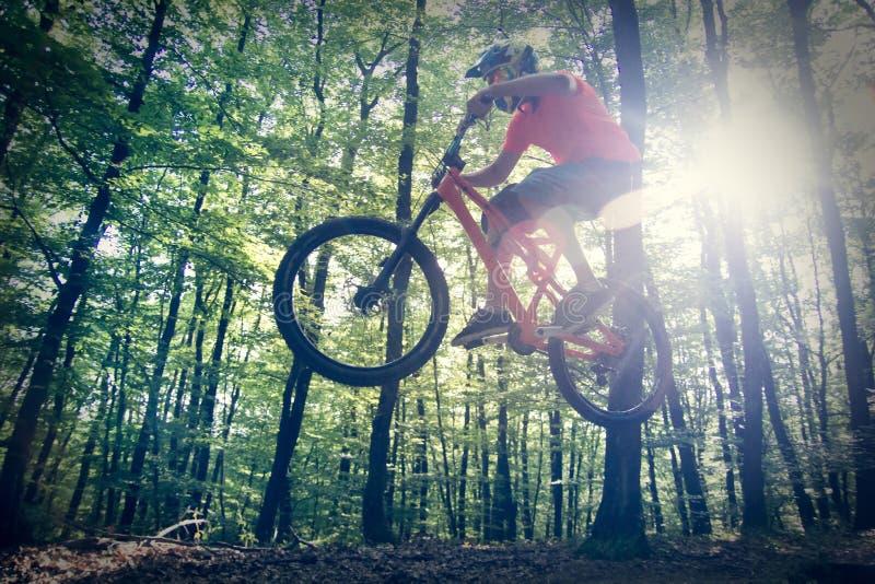 Downhill mountain biking stock images