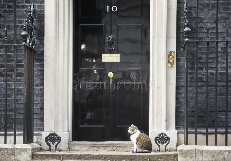 Download 10 Downing Street Chief Mouser Cat Editorial Photo - Image of larry, mouser: 91325381