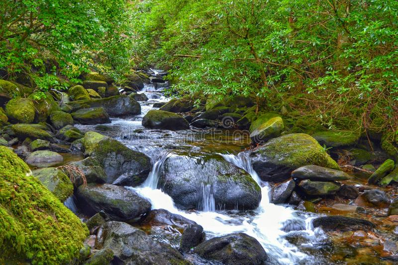 Downstream of the famous Torc Waterfall in the beautiful Killarney National Park, Kerry, Ireland stock image