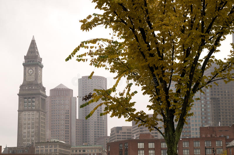 Downtown Boston During the Fall. With Overcast Sky royalty free stock images
