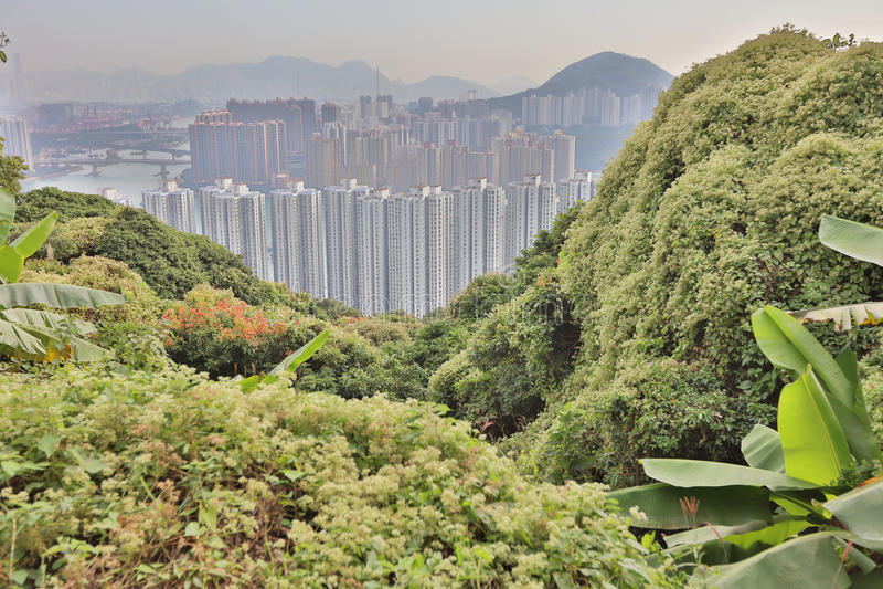 Downtown Kowloon Hongkong from Tsuen Wan royalty free stock photo