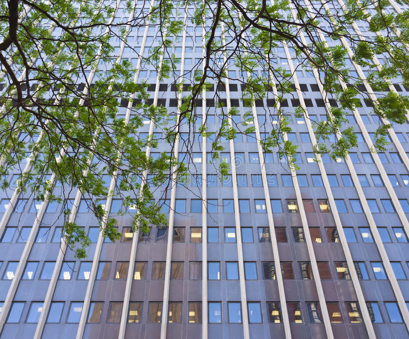 Download Downtown Skyscraper Royalty Free Stock Photos - Image: 25206148