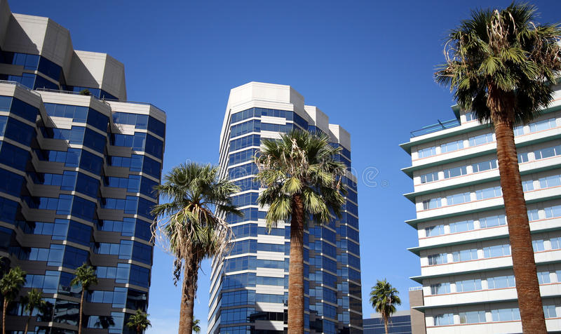 A Downtown View of Palms and Buildings royalty free stock image