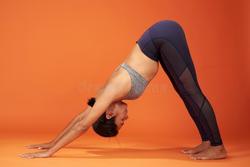 Downward Facing Dog yoga pose stock image