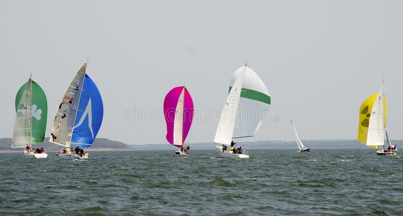 Downwind Spinnakers. Sailboat racing on Lake Texoma, colorful spinnakers stock photo