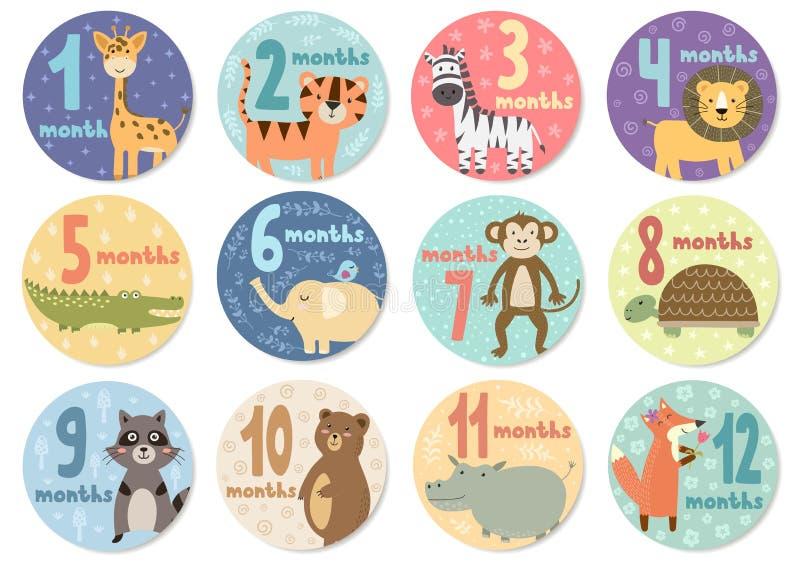 Doze meses bonitos das etiquetas com os animais para bebês ilustração royalty free