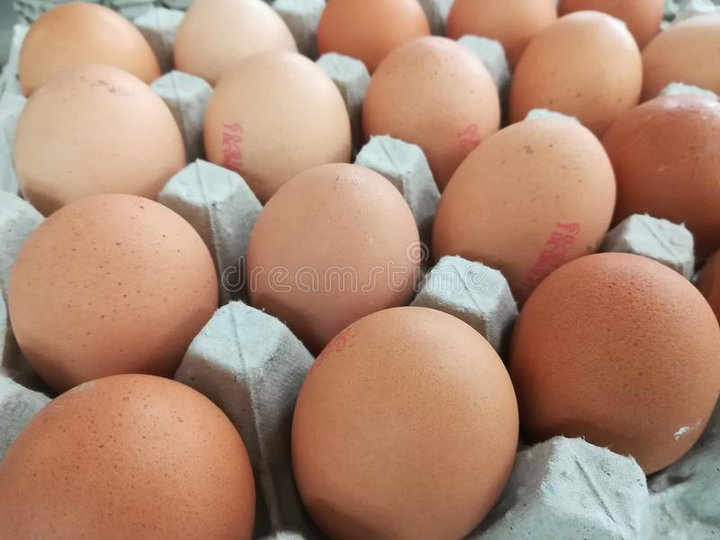 Dozen egg. A dozen eggs in a farm royalty free stock photos