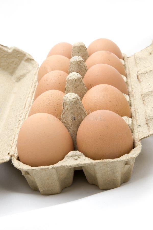 Dozen eggs. A dozen of eggs on a white background royalty free stock photo