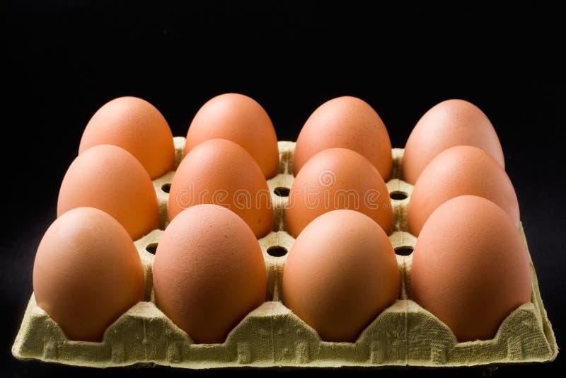 Dozen eggs. In a carton on black background royalty free stock image