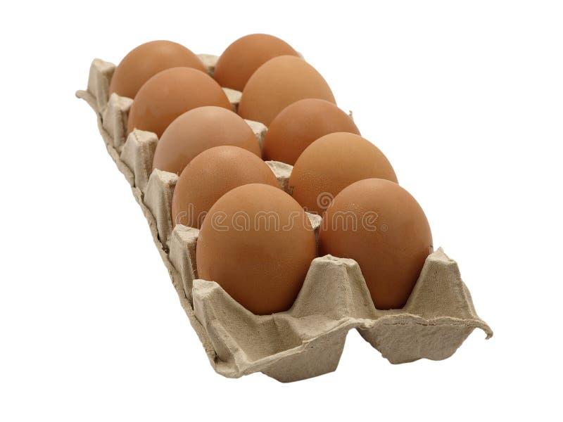 Dozen eggs. A dozen fresh eggs arranged in a row in the pot stock photography