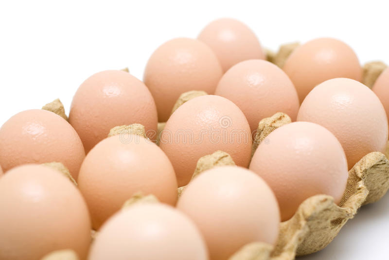 Dozen eggs. Fresh dozen of eggs in paper plate stock photos
