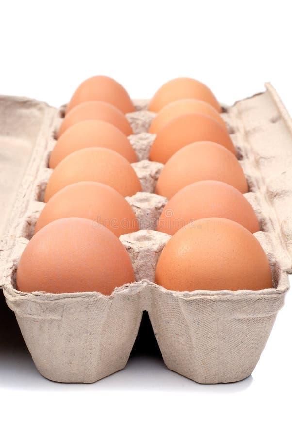 Dozen Eggs. Carton Of A Dozen Eggs In A Cardboard Box, Isolated Over White royalty free stock photo
