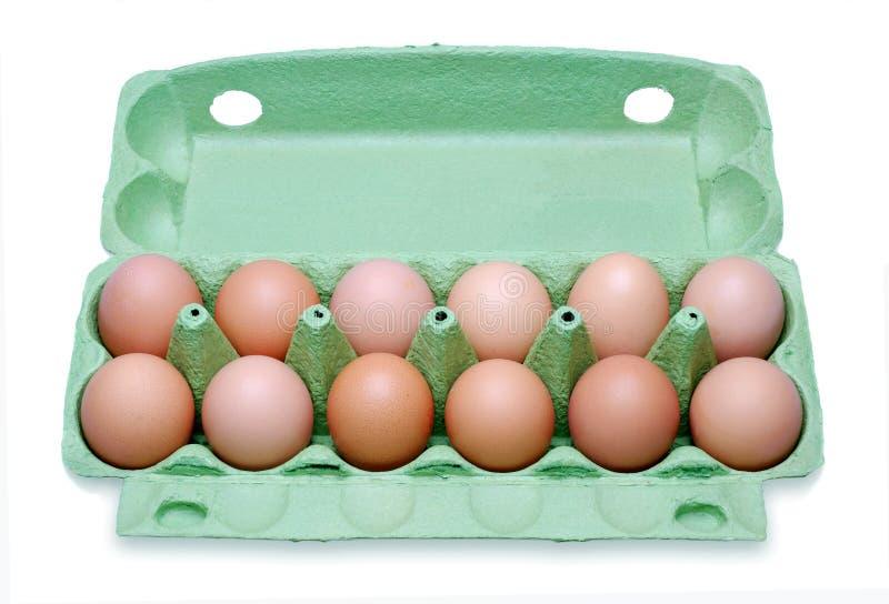 Dozen eggs in a box stock photography