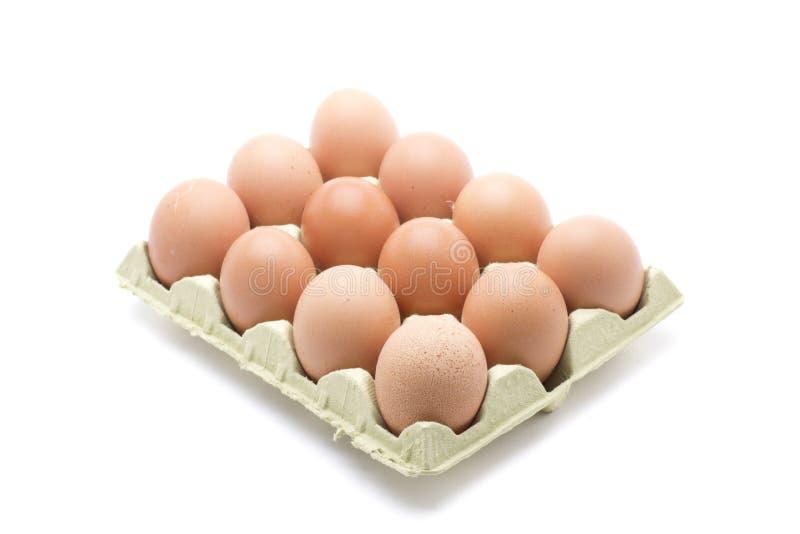 Dozen eggs box. A box with a dozen farm fresh eggs royalty free stock photos