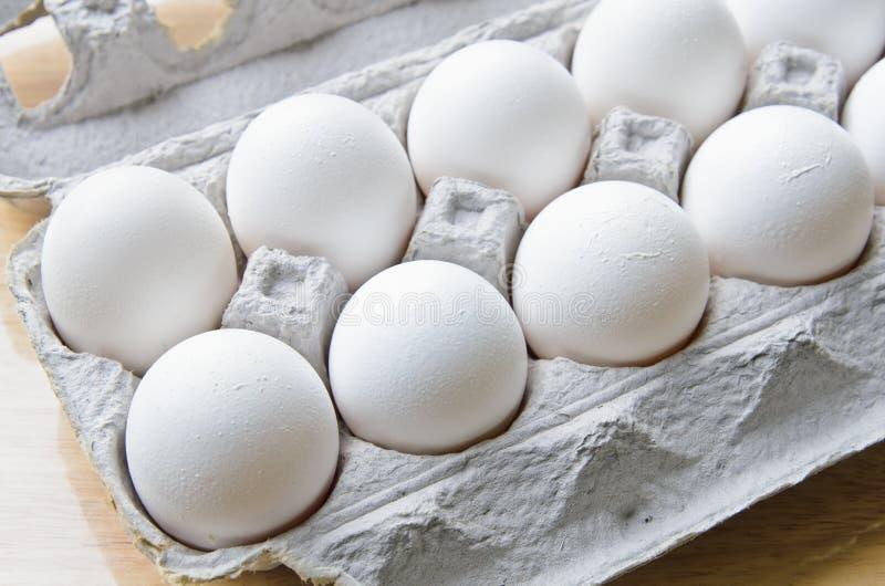 A dozen of eggs in a box. A dozen of white eggs in a box royalty free stock photo