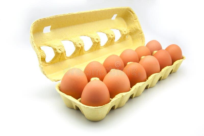 Dozen eggs. In a cardboard box royalty free stock photography