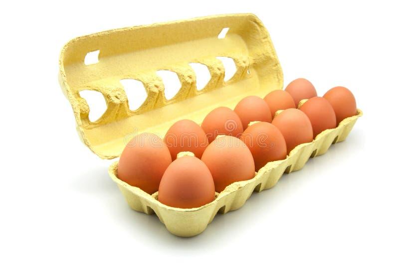 Dozen eggs. In a cardboard box royalty free stock photos