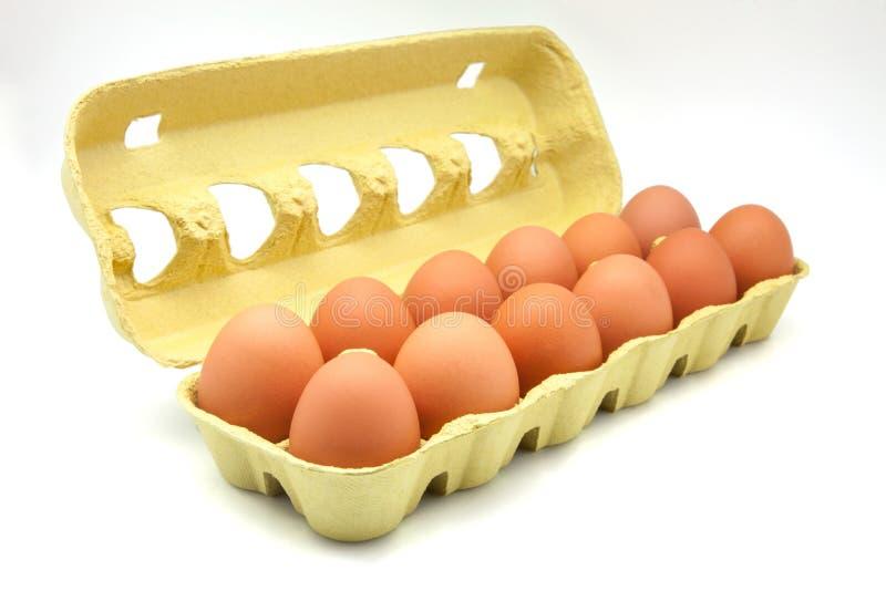 Dozen of eggs. In carton stock photography