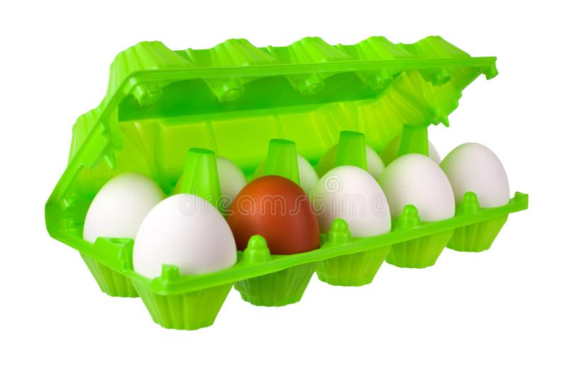 Dozen eggs white and one brown or red in open green plastic package on white background isolated close up royalty free stock photo