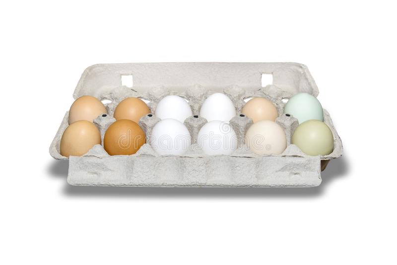 Dozen of Farm Fresh, Organic Ameraucana Chicken Eggs royalty free stock image