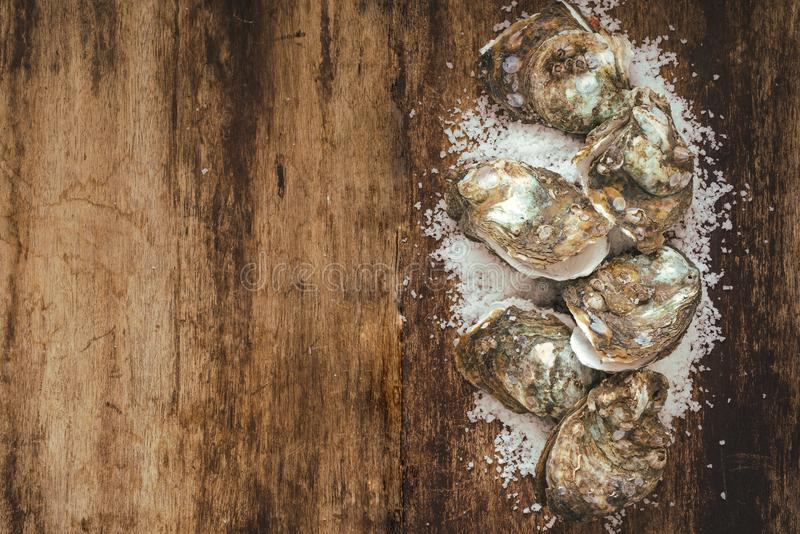 Dozen fresh oysters on the wooden and sea salt. Top view.  royalty free stock photos
