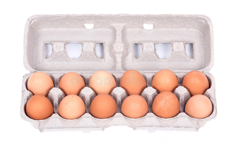 Dozen organic eggs in a box. Separated on white background royalty free stock photo