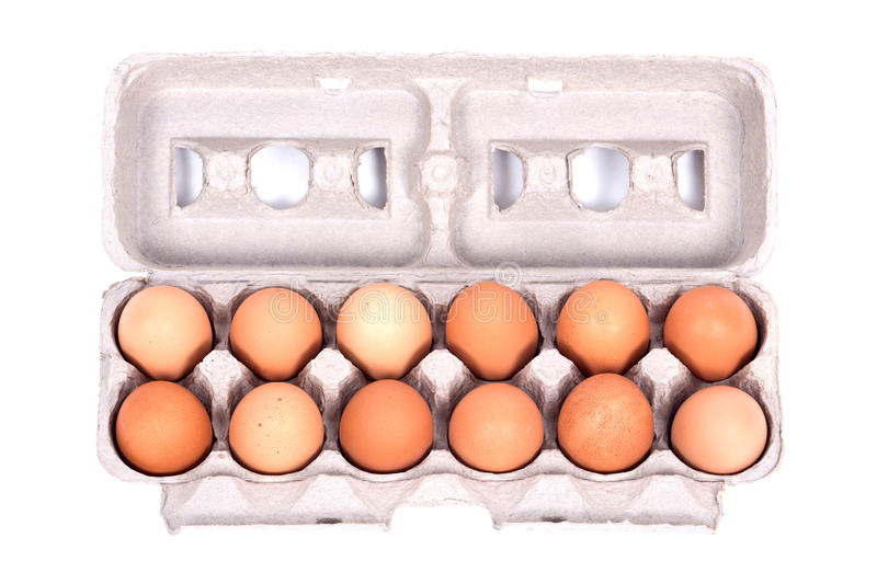 Dozen organic eggs in a box. Separated on white background stock image