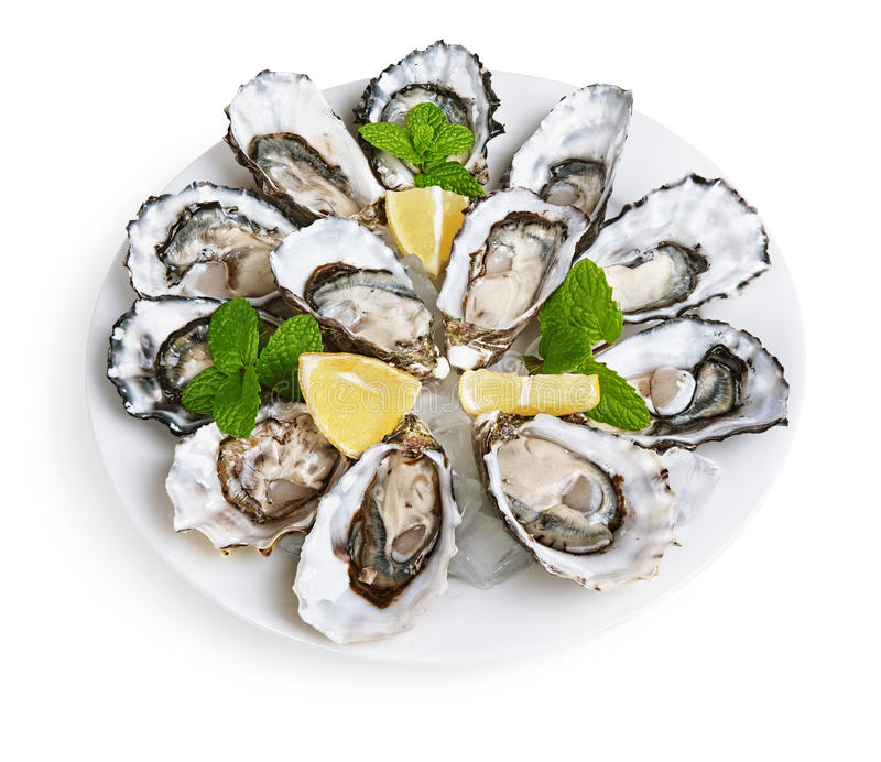 Dozen oysters on white plate. With ice and lemon isolated on white background royalty free stock image