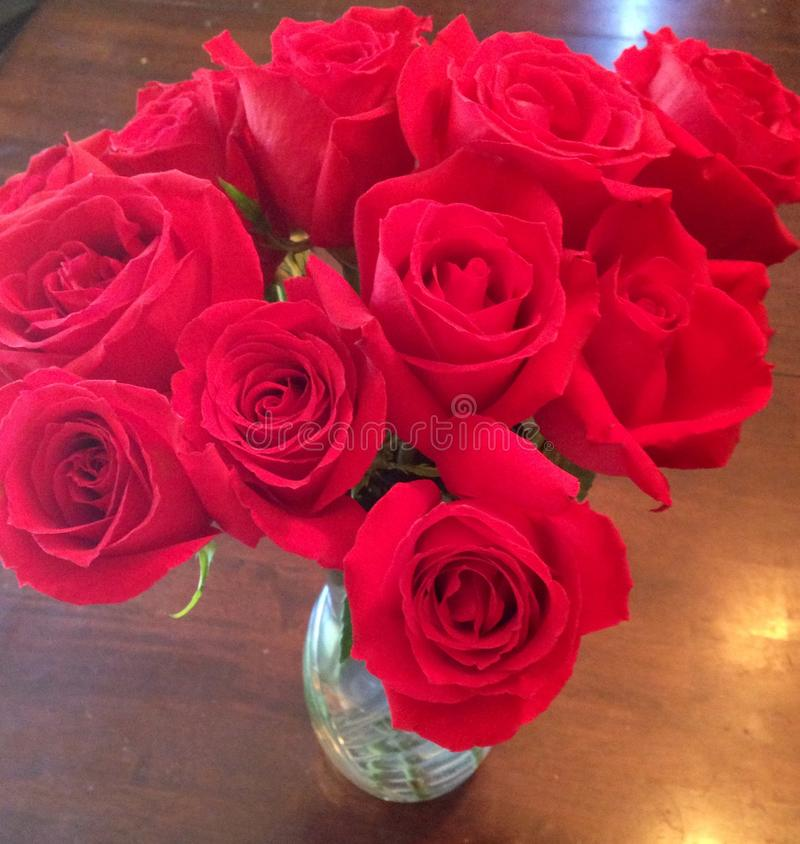 A dozen red roses. In a crystal glass vase stock photography
