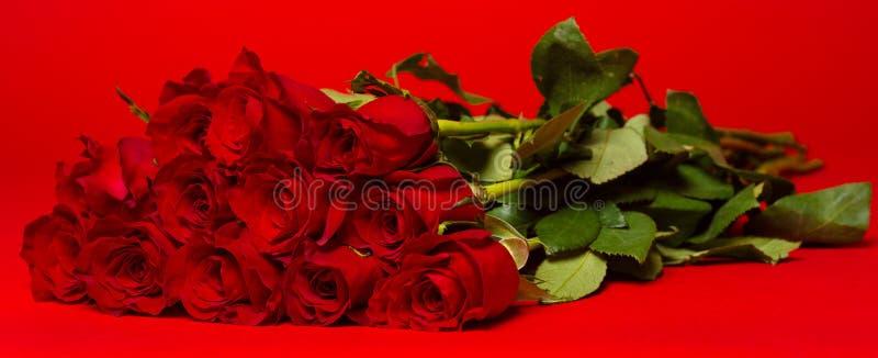 Dozen red roses on a red background. A dozen of long stemmed red roses on a red background stock photos