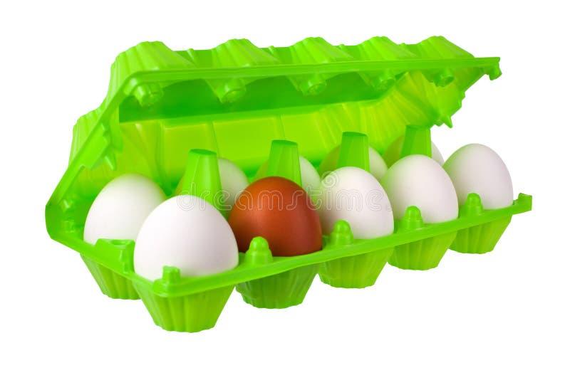 Dozijn eierenwit en één bruin of rood in open groen plastic pakket op witte achtergrond isoleerden dicht omhoog royalty-vrije stock foto