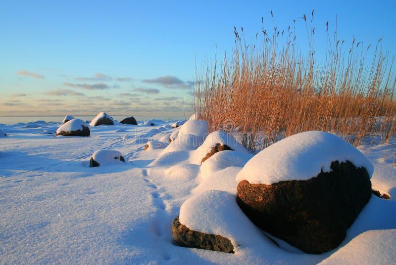 Download Dröm arkivfoto. Bild av danat, natur, dröm, frost, oklarheter - 504678