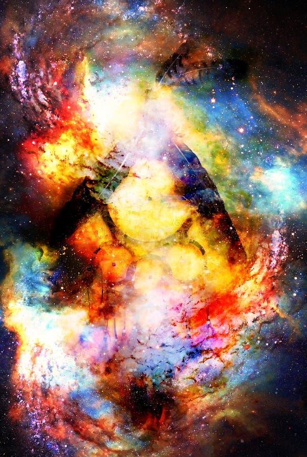 Dröm- stoppare med örnen och korpsvarta fjädrar i kosmiskt utrymme arkivfoto