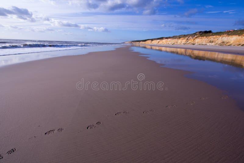 Dröm- strand royaltyfri foto