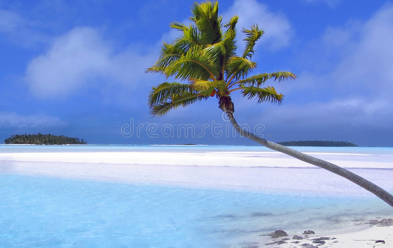 dröm- tropiskt royaltyfria bilder