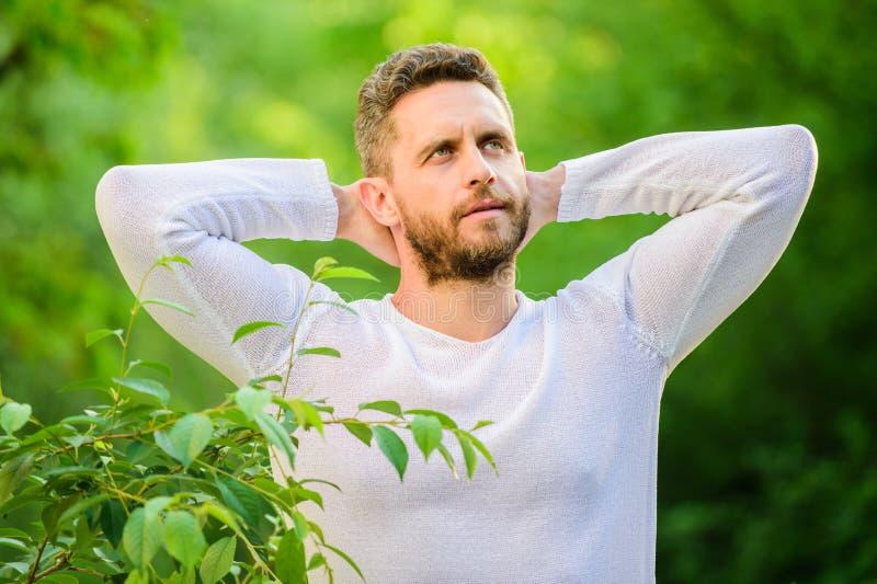Dr?mma mannen i skogdagdr?mmare ekologiskt liv f?r man man i gr?n skogmorgon i natur Sund livsstil royaltyfria foton