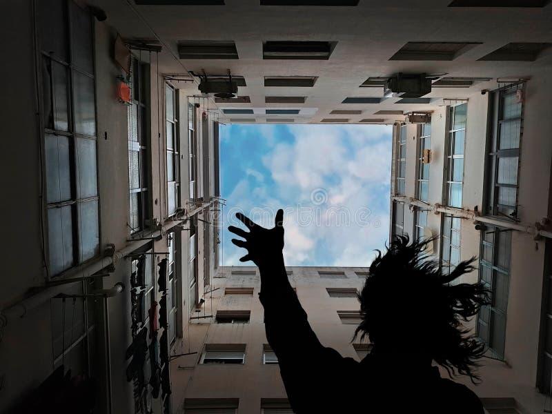 Drömma med frihet arkivfoton