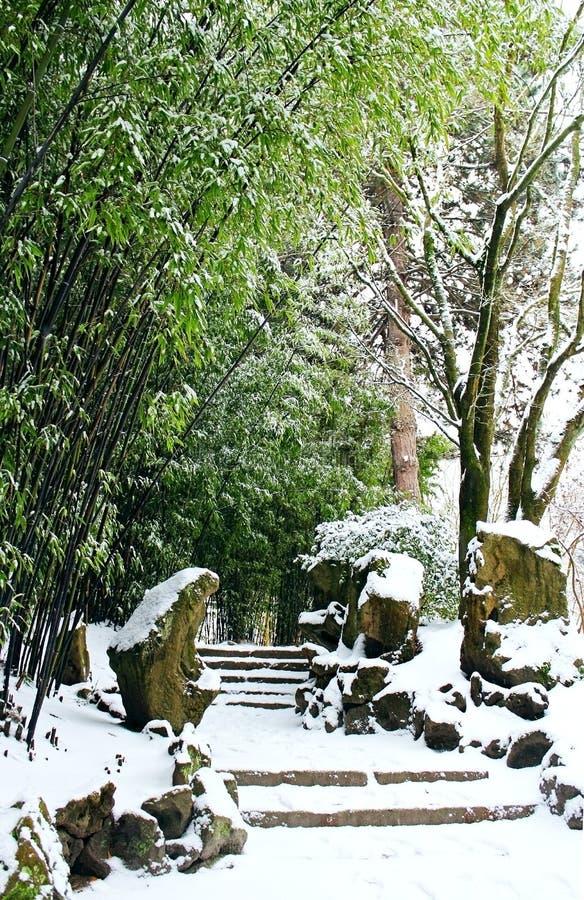 Dr. Jardim chinês clássico de Sun Yat-sen no inverno imagem de stock royalty free