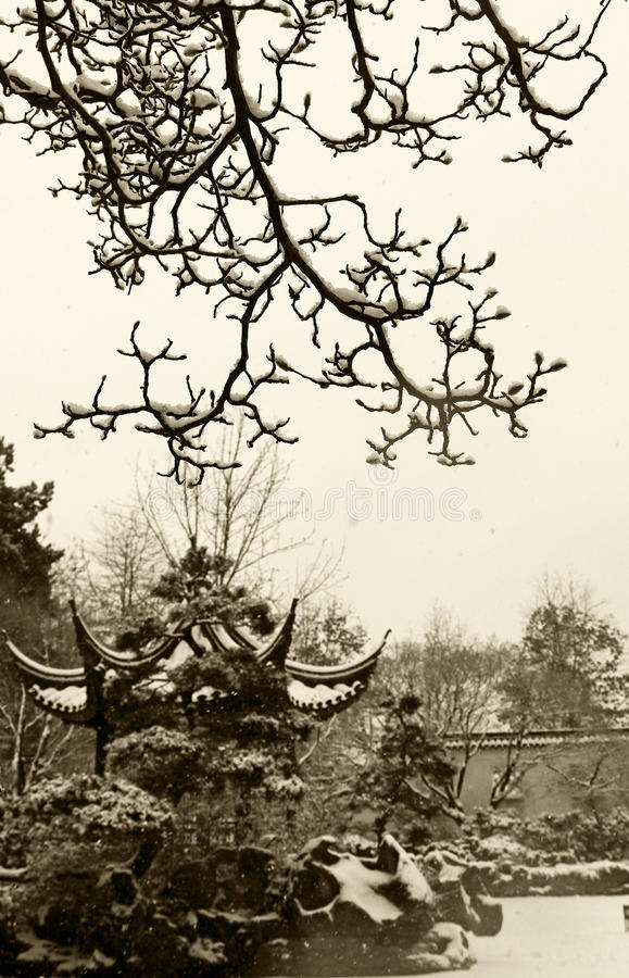 Dr. Klassischer chinesischer Garten Sun Yat-sens im Winter lizenzfreie stockbilder