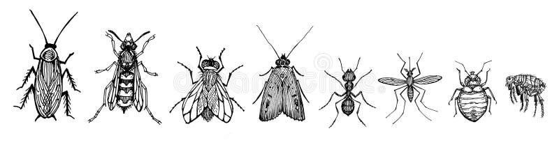 Kryp royaltyfri illustrationer