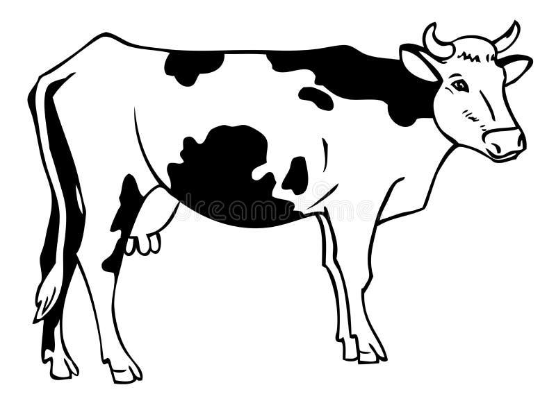 Dra en ko stock illustrationer