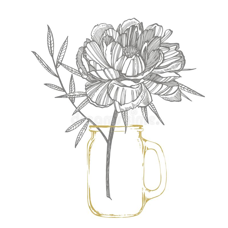 Dra f?r f?r pionblomma och sidor Utdragen inristad blom- uppsättning för hand Botaniska illustrationer Utmärkt för tatuering, inb royaltyfri illustrationer