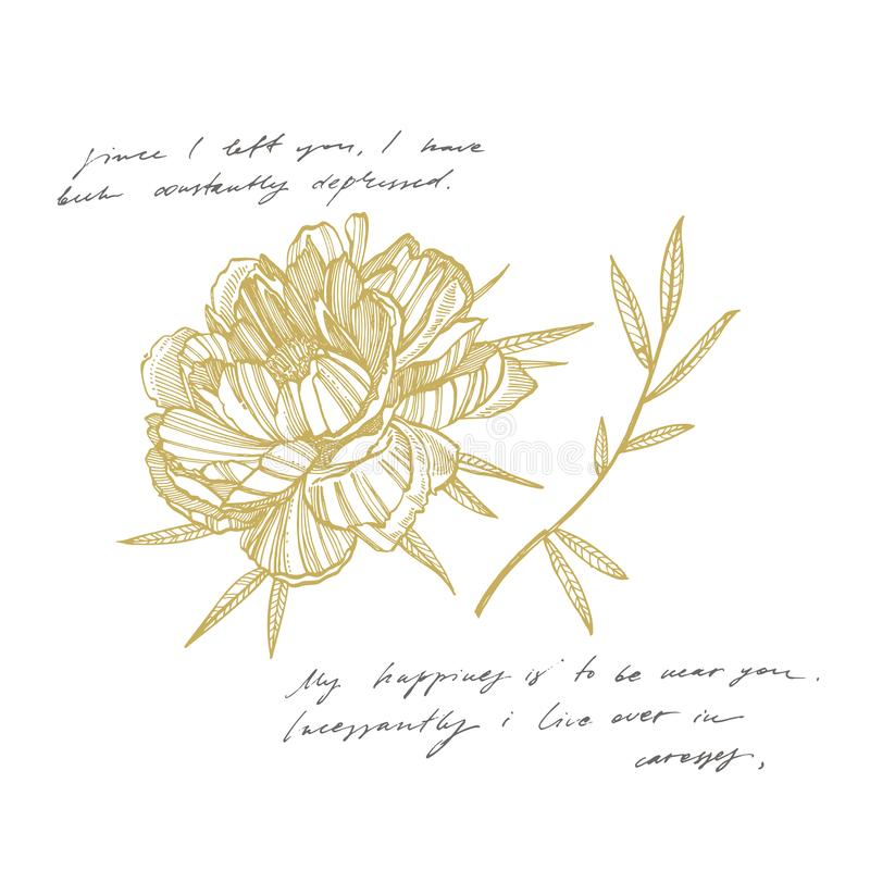 Dra f?r f?r pionblomma och sidor Utdragen inristad blom- uppsättning för hand Botaniska illustrationer Utmärkt för tatuering, inb stock illustrationer